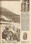 1977-Monte-Carlo-15-v